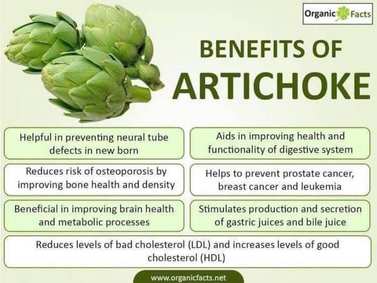 artichoke benefits Lamb and artichoke stew recipe